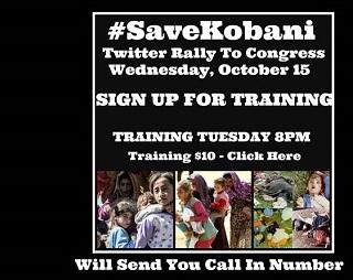 Save Kobani 2